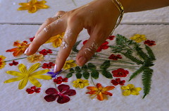 FABRICATION PAPIER FLEURI (Sergiobello) Tags: composition fleurs  papier fleuri artisanat pte floraleflowers