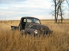 Rusty Old Truck - 1950 Chevrolet (dave_7) Tags: old green chevrolet field car truck rust rusty alberta creativecommons 50 1950 advanceddesign
