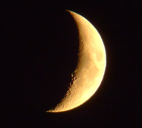 03Nov08 moon at 5pm