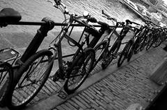 Bicyles Rail (Eddie Chui) Tags: bw nikon rail bicyles d40 abigfave bwartaward llovemypic eddiechui