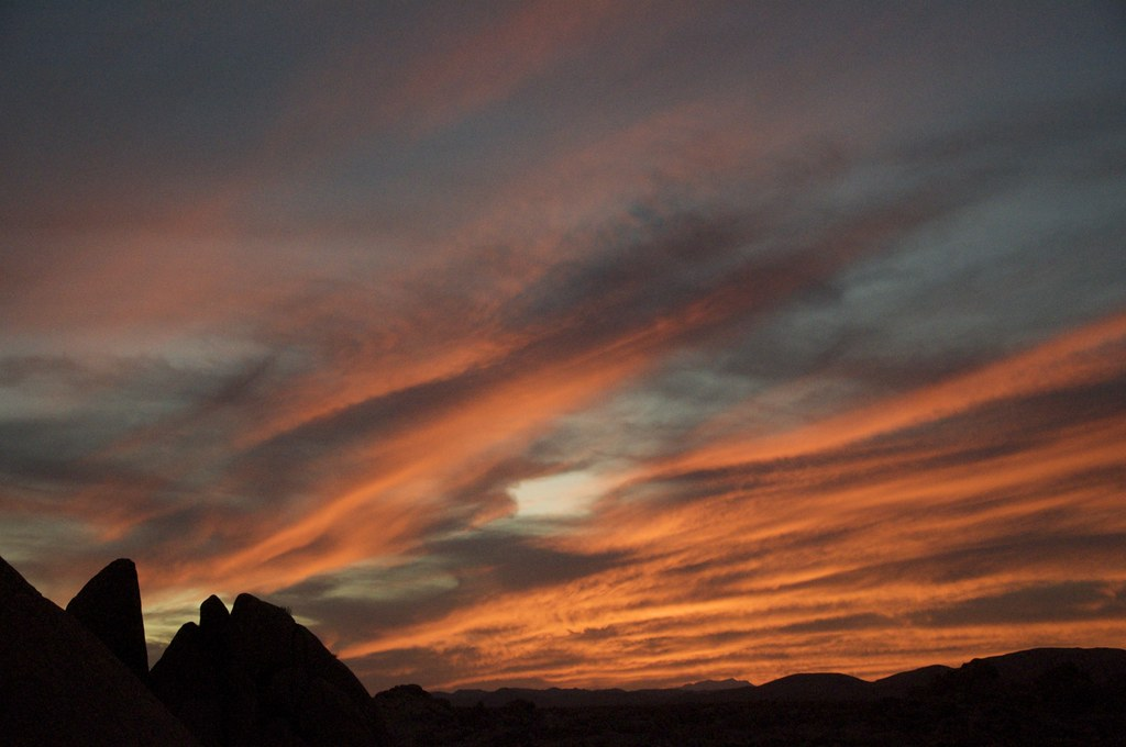 Joshua Tree Sunset.