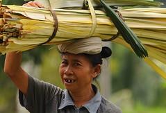 Senza denti 2 (Giangi Genta) Tags: people bali indonesia market mercato denpasar denti senzadenti