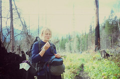 heather eating (Pinnacle, Montana, United States) Photo