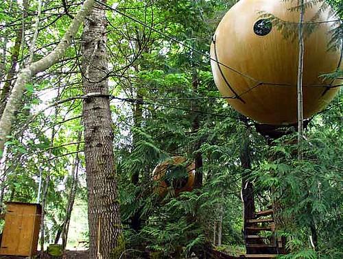 tree spheres