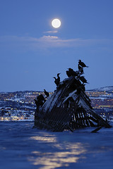 #4 (Garcia Foto) Tags: norway cormorants nikon shipwreck d200 nikkor f25 shags ais tromsø 105mm tomasjordnes
