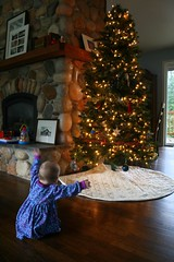 Yay tree!