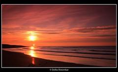 Sunset - Kijkduin (DolliaSH) Tags: light sunset sea sun color sol beach colors strand sunrise canon atardecer photography eos lights soleil photo zonsondergang tramonto foto sonnenuntergang photos wideangle paisaje denhaag filter sole sonne zon tobacco thehague 1022 coucherdesoleil puestadelsol kijkduin zakat cokin 50d gnd8 solntse z121s spiritofphotography dollia flickrlovers dollias sheombar z125l