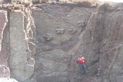 Peru: Huarmey (Ancash) - cretaceous rock