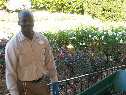 Keeping the Rose Garden in Bloom Thank you Herold from Horticulture