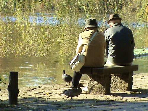 old couple feeding ducks