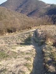 vicinanze 7 guadi (Valsanzibio, Veneto, Italy) Photo