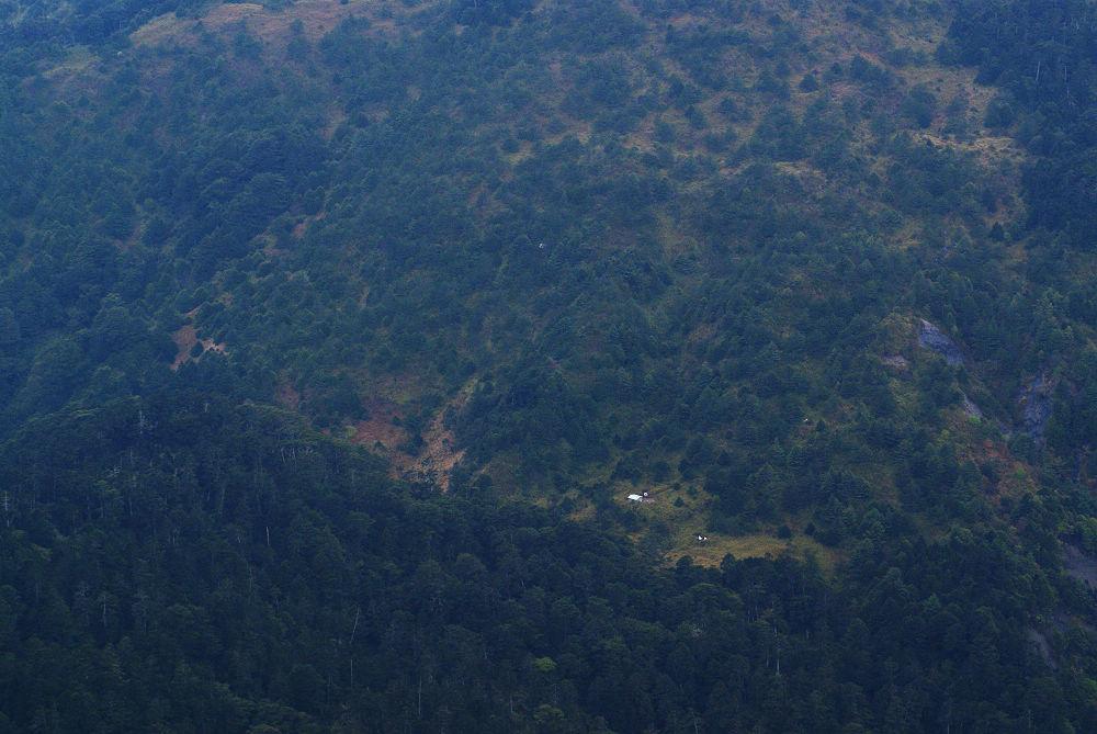 奇萊Day3-36 俯瞰黑水塘鞍部
