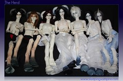 The Herd ( Cenarius ) Tags: lucifer doll dia bjd soom abel monthly cain seraph shaitan thanatos sard tenebra heliot