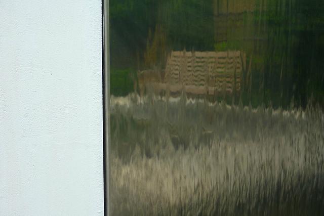garden reflections