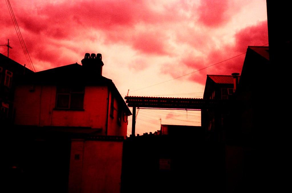 crazy pink 4