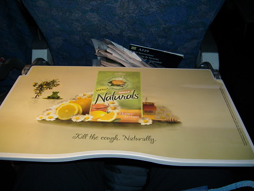 Advertising on Airplanes:  Taking Advantage of a Captive Audience?