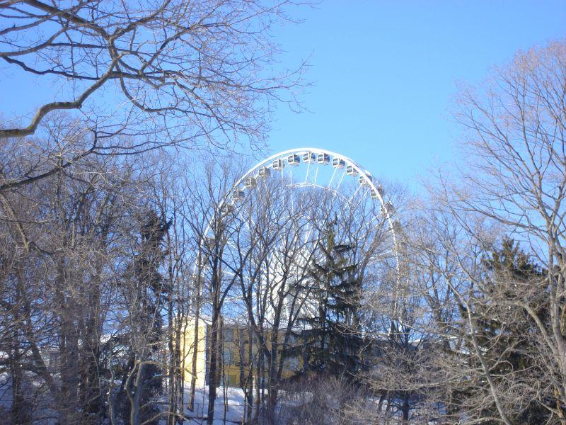 2008-03-13 187