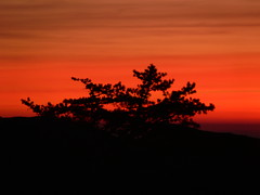 Sky on fire (Websphotos) Tags: sun sunrise shenandoah virgina reallycold oldragmountain whenwillthewindstop haveyouseenmyfingerstheywerearoundheresomewhere
