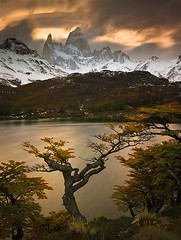 Autumn in Patagonia by Michael Anderson (AndersonImages) Tags: travel autumn sunset patagonia mountain lake storm reflection fall ice argentina leaves digital america sunrise trekking trek lenga michael movement torre wind south fitzroy peak glacier hasselblad anderson cerro april medium format wilderness alpenglow chalten h2d