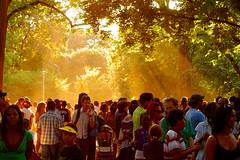 AfroFest Sunburst. (avp17) Tags: park urban sun toronto ontario canada black yellow festival d50 nikon african sunday july sunny queens queenspark sunburst nikkor 18 multicultural idyllic afrofest afrofest2008
