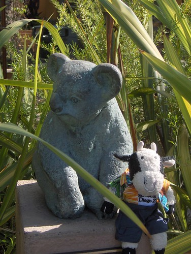 The Tomb of the Unknown Koala
