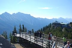 Banff38 Walkway to Sulfur Mt Lookout (sonjakastner) Tags: banff johnstoncanyon banffgondola
