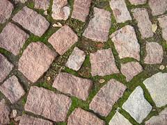 Cobblestone (<T-Y>) Tags: cobblestone