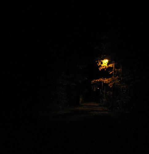 I think i found Narnia!
