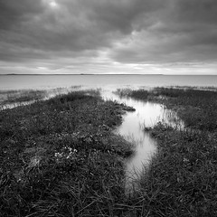 wetland margin III (Adam Clutterbuck) Tags: uk greatbritain england blackandwhite bw cloud monochrome square mono blackwhite cloudy unitedkingdom britain tide somerset bn elements incoming gb inlet bandw sq tidal channel burnham wetland burnhamonsea grassy margin greengage stert adamclutterbuck sqbw bwsq showinrecentset novagallery stertisland