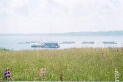 Sea cages (Cheryl Q) Tags: fish farm salmon research aquaculture atlanticsalmon