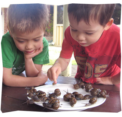 My Boys and a Plateful of Snails