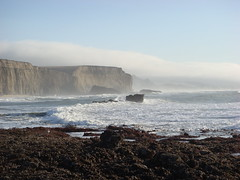 MartinsBeach_2007-032 (Martins Beach, California, United States) Photo