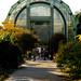 42 - 03 novembre 2008 Paris Jardin des plantes Serres tropicales Façade