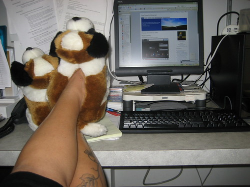 blogging in my slippers