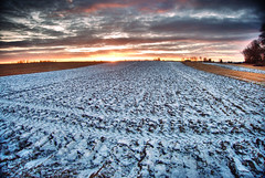Late Autumn Field VI (.Eide) Tags: autumn sky snow field norway klfta oivindeide leivadlux4