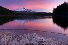 Trillium Lake - Frosty Sunrise (Jesse Estes) Tags: mounthood lightroom trilliumlake sigma1020 lighroom jesseestes