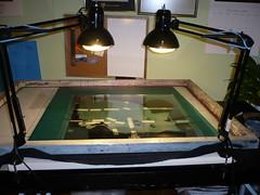 Exposing a Silk Screen at Home