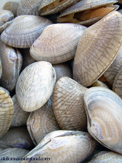 Are There Clams At Leadbetter Beach Ca