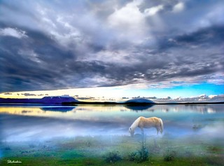 Icelandic landscape #7