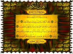 The Holy Qur'an القرآن الكريم