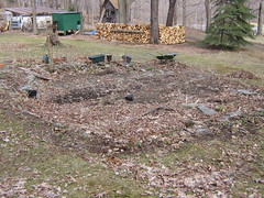 Veggie garden site
