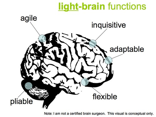 Light Brained (Not Right Brained)