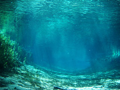Ginnie Springs, Florida (ded_ch) Tags: blue light plants sun color reflection water spring sand florida sony tunnel scuba diving calm fresh clear springs riverbed ripples rays channel freshwater ginnie crystalclear ginniesprings floridasprings s dsct100