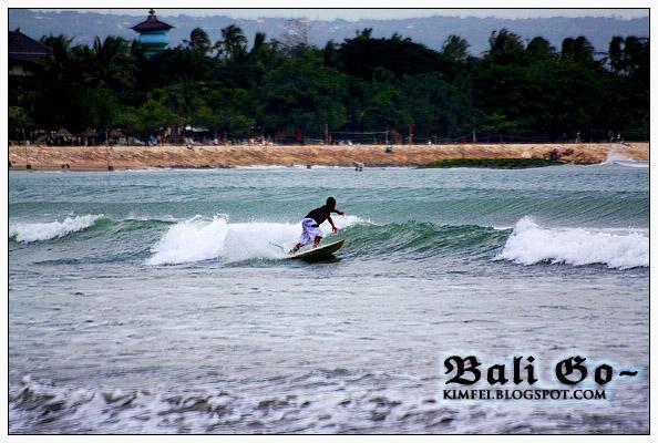 15-Surfer