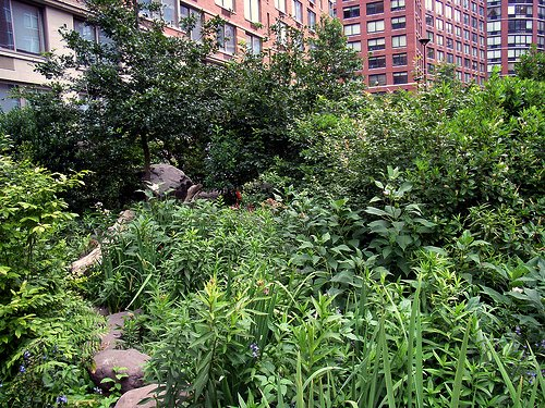Teardrop Park, NYC (by: Payton Chung, creative commons license)