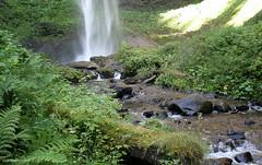 Latourell Creek (Patrick Dirden) Tags: water rock oregon waterfall moss pacificnorthwest basalt columbiarivergorge latourellfalls multnomahcounty columbiarivernationalscenicarea latourellcreek