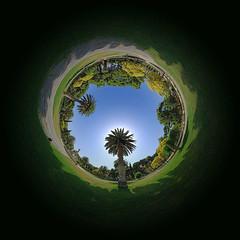Inside Garden 360 (Paulo Brando) Tags: espaa garden spain nikon espanha jardin 360 zaragoza jardim paulo nikkor spanien spagna cubism naturesfinest d80 nikkor105 nodalninja brandao nikond80 pan360 goldstaraward paulobrandao pbrandao nnl5