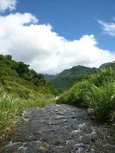 :「台東成功環境信託體驗園區」四周保留豐富美麗的自然生態