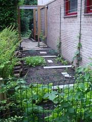 Groentetuin eind augustus 2008