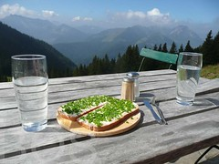 Lunch at the Fellalm, Groer Traithen, Bavaria, Germany (Pterodactylus69) Tags: panorama food mountains alps germany bread lunch pepper bavaria essen drink beverage cottage htte salt sandwich berge butter snack vista alm shack alpen pause aussicht chives trinken alp allium lauch pfeffer getrnk vesper mittagspause schnittlauch salz alliumschoenoprasum monocot brotzeit monocots almhtte alliaceae bayerischealpen fellalm